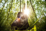 guitar-in-forest