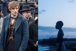 Moonlight Film Review Jenkins Fantastic Beasts
