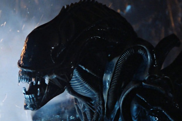 Xenomorph from Alien